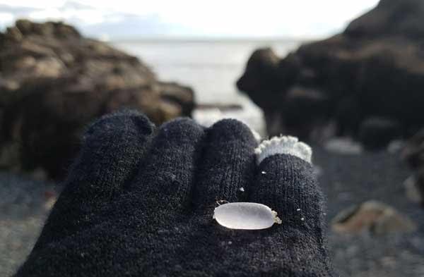 Gloved hand holding white sea glass on East Point Beach, Biddeford, Maine.
