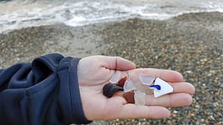 Sea glass found at Alki Beach, Seattle, Washington