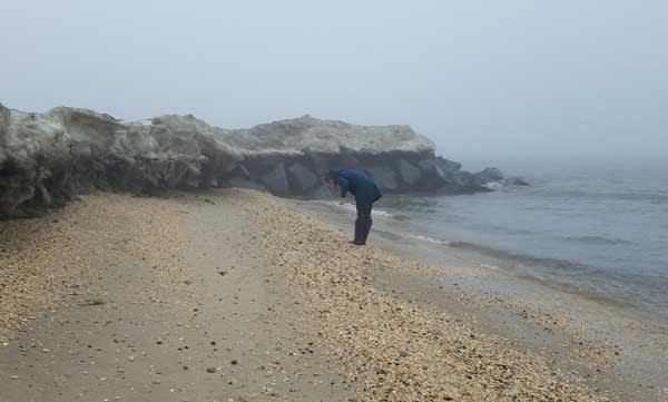 Searching for sea glass Cape May