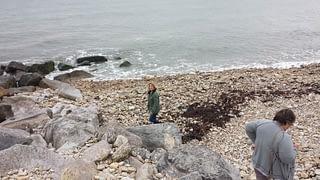 Charmouth Beach, Jurassic Coast, Dorset, United Kingdom