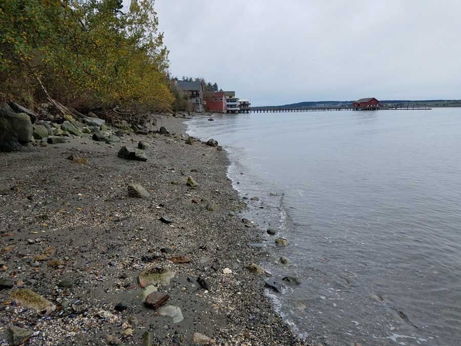 Beach at Coupeville, Whidbey Island