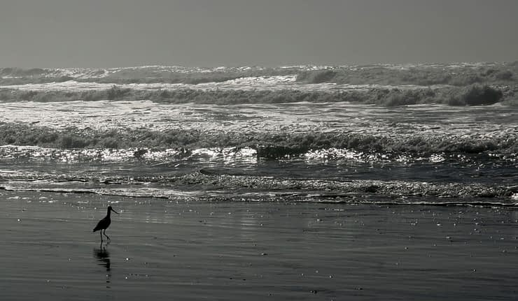 Waves crashing onto a beach, bringing sea glass ashore.
