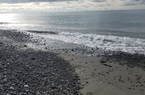 Sea glass, rocks, driftwood Deception Pass Beach Washington State