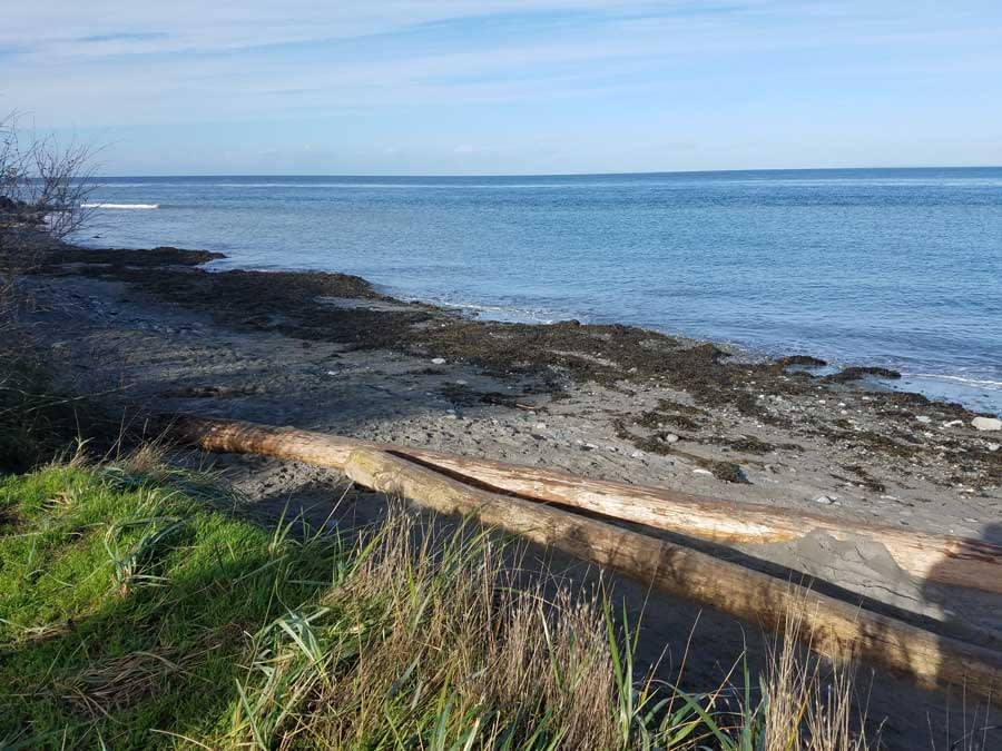 Hiking to Glass Beach, Port Townsend