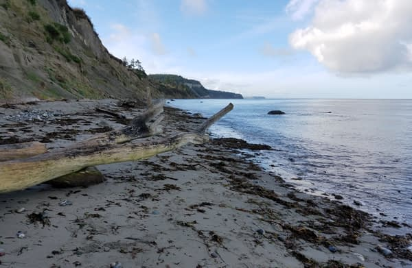 North Beach, Port Townsend heading towards McCurdy Point and Glass Beach.