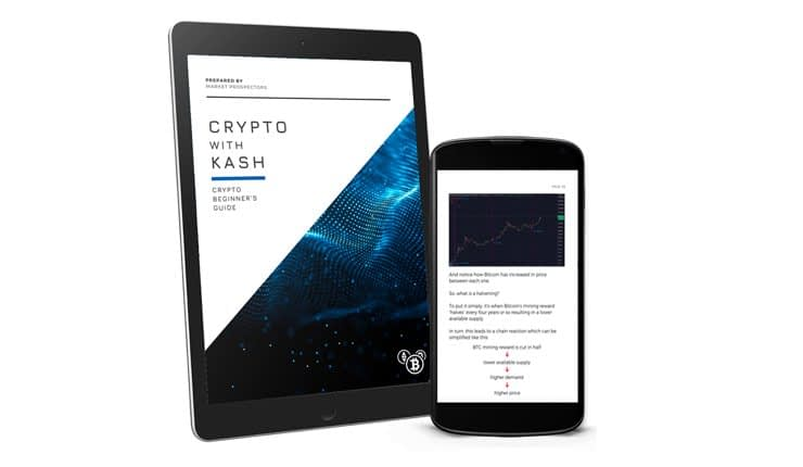 Crypto With Kash Review