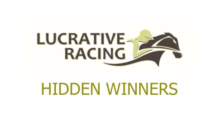 Hidden Winners Review