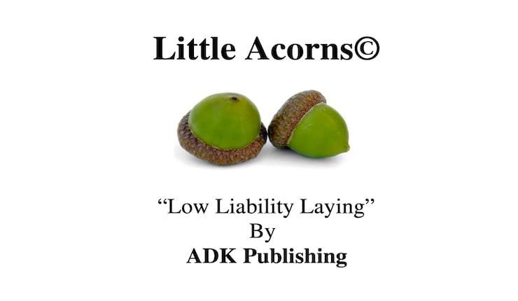 Little Acorns Review