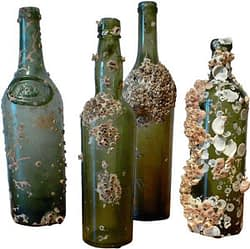 Glass bottles covered in barnacles, brought up from a ship wreck.