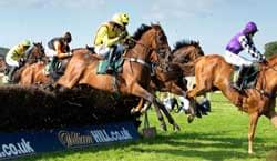 thoroughbred-betting-review-image
