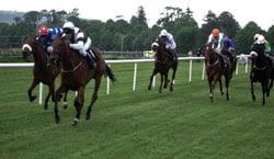 diamond-racing-lays-review-image