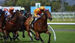 value-backing-horse-betting-review-image