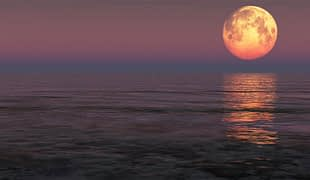 Large supermoon over the ocean.
