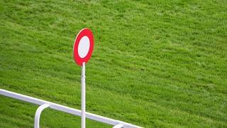 The Horse Racing Guru Review