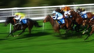 Master Racing Tipster Review