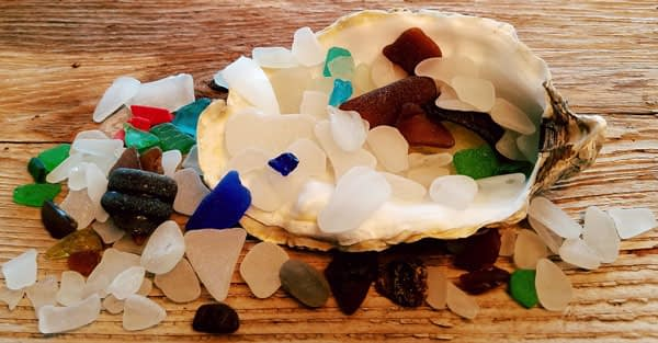Pieces of blue sea glass, clear sea glass and green sea glass and brown sea glass in an seashell found on the shore at Alki Beach Park, Seattle, Washington set on a wood table.