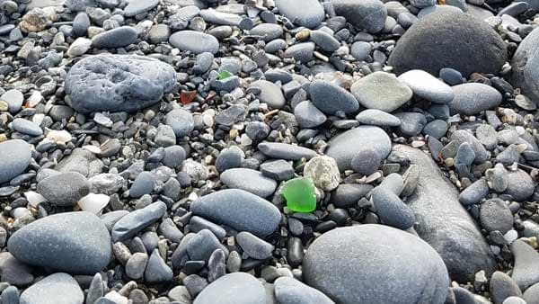 Green sea glass and brown sea glass hiding in the pebbles on East Point Beach, Biddeford, Maine.