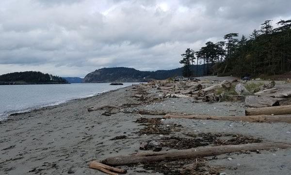 Deception Pass State Beach, Washington, State driftwood