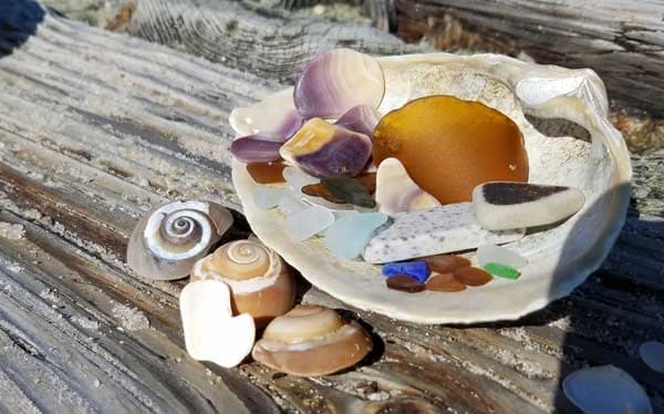 Blue sea glass, wampum and seashells in a clam shell on a wood piling on the beach.