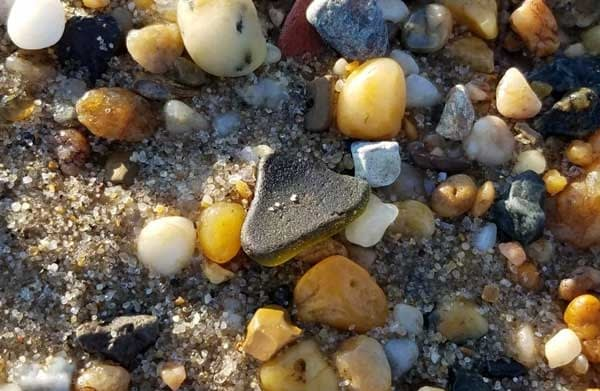 woodland-beach-delaware-sea-glass-green