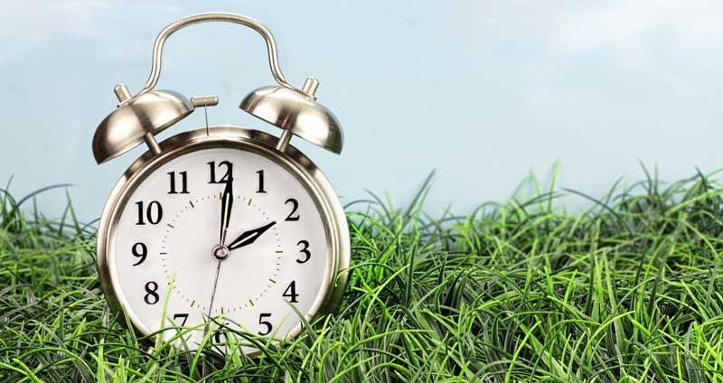 An alarm clock sitting in grass.